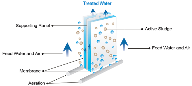 EnviQ-Treated-Water-Diagram